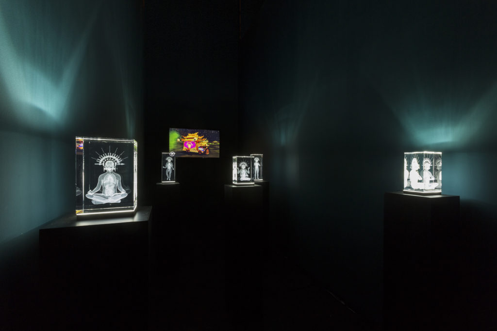 installation-view_2
